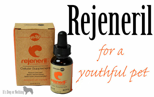 Rejeneril – For a Youthful Pet