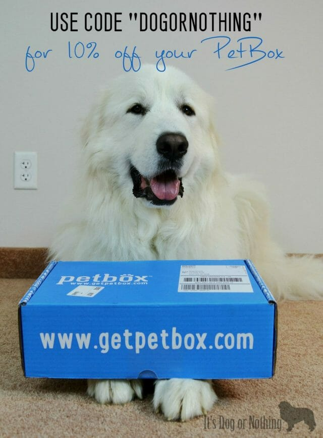"Want to spoil your dog with the monthly subscription, PetBox? Use code ""DOGORNOTHING"" at check out!"