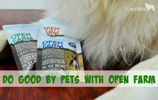 Do good by pets by feeding Open Farm's humane, healthy dog food.