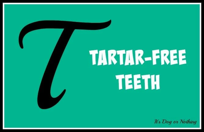 Tartar-Free Teeth [GIVEAWAY!]