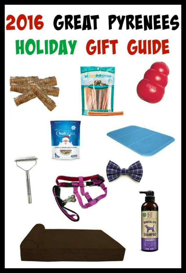 Struggling with what to get your Great Pyrenees for Christmas? Here are 10 fluffy favorites!