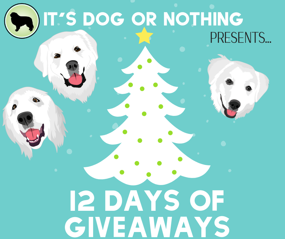 It's the most wonderful time of the year. Join It's Dog or Nothing for our 12 days of giveaways!